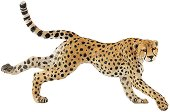 """Гепард - Фигура от серията """"Диви животни"""" - фигура"""