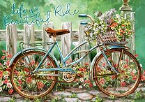Красиво пътуване - Дона Джелсинър (Dona Gelsinder) -