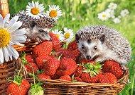 Таралеж в ягодов десерт - пъзел
