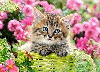 Коте сред градински цветя - премиум - пъзел