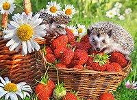 Таралеж в ягодов десерт - премиум - пъзел