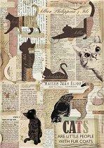 Декупажна хартия - Котки и вестници - Формат А4