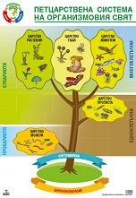 Учебно табло по биология и здравно образование за 7. клас -