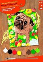 Оцветявай по номера - Мопс - Творчески комплект с акрилни бои - играчка