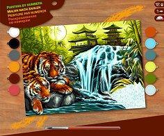 Оцветявай по номера - Почиващи тигри - Творчески комплект с акрилни бои - творчески комплект