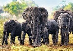 Африкански слонове - пъзел