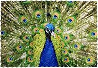 Green Peacock - Ръчно изработен дървен пъзел -
