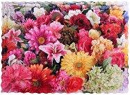 Amazing Flowers -