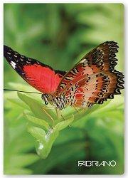 Ученическа тетрадка - Пеперуди : Формат А4 с широки редове - 40 листа -