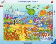 Морски обитатели -