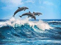 Делфини - пъзел