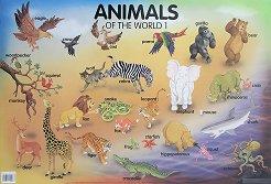 Animals of the World 1 - стенно табло на английски език -