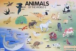 Animals of the World 2 - стенно табло на английски език -