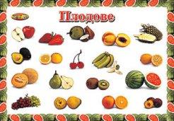 Плодове - учебно табло за индивидуални занимания - 38.5 x 26.7 cm -