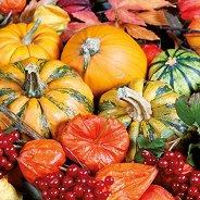 Салфетки за декупаж - Есенни тикви - Пакет от 20 броя