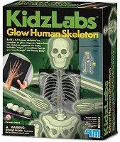 Светещ човешки скелет -