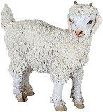 Ангорска коза - фигура
