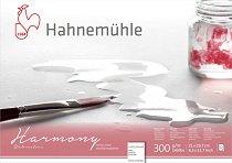 """Скицник за рисуване с акварел - Harmony - С повърхност """"cold pressed"""" и плътност 300 g/m : 2 :"""