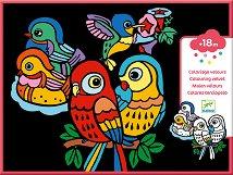 Оцветявай с флумастери - Кадифени птици - Творчески комплект -