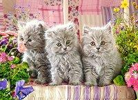 """Сиви котета - Пъзел от серията """"Castorland: Premium"""" - пъзел"""