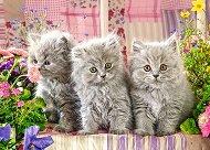 Сиви котета - пъзел