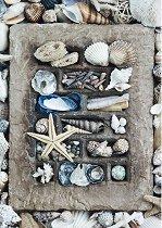 """Съкровищата на морето - От колекцията """"Premium Quality"""" - пъзел"""