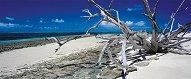 """Зеленият остров, Австралия - панорама - Марк Грей (Mark Gray) : От колекцията """"Premium Quality"""" - пъзел"""