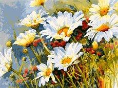 Рисуване по номера - Маргаритки - Комплект за картина с размери 40 x 50 cm
