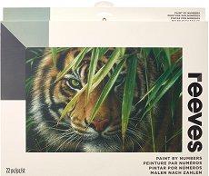 Рисуване по номера - Тигър - Комплект за картина с размери 30 x 40 cm
