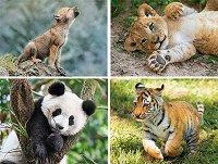 Диви животни - Комплект от 4 пъзела -