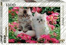 """Сладки котенца - От колекция """"Animal"""" -"""