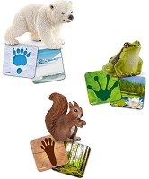 """Диви животни - Комплект фигурки и флаш карти от серията """"Животни от дивия свят"""" -"""