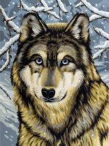 Рисуване по номера - Вълк - Комплект за картина с размери 22.5 x 30.5 cm