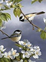Рисуване по номера - Птици - Комплект за картина с размери 22 x 30 cm
