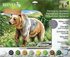 Рисуване по номера - Мечка - Комплект за картина с размери 40 x 30 cm