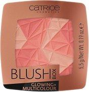 Catrice Blush Box Glowing - Многоцветен руж - червило