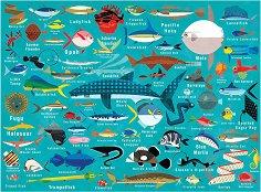 """Живот в океана - От серията """"Mudpuppy"""" -"""