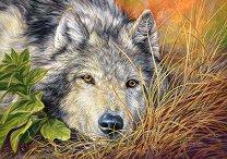 Вълк - пъзел