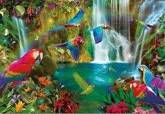 Тропически папагали -