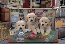 Кученца в куфар - пъзел
