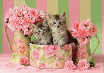Котета и рози - пъзел