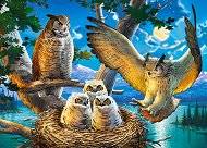 Семейство сови - пъзел