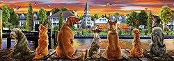Кучета на кея - панорама -