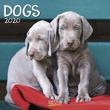 Стенен календар - Dogs 2020 -