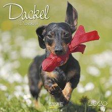 Стенен календар - Dackel 2020 -