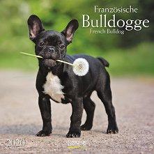 Стенен календар - French Bulldog 2020 -