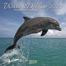 Стенен календар - Whales & Dolphins 2020 -