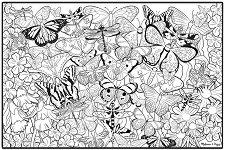 Картина за оцветяване - Пеперуди -