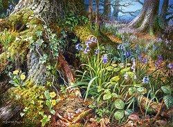 В Русландските гори - Туифорд Греъм (Twyford Graham) -