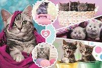 Очарователни котенца - пъзел